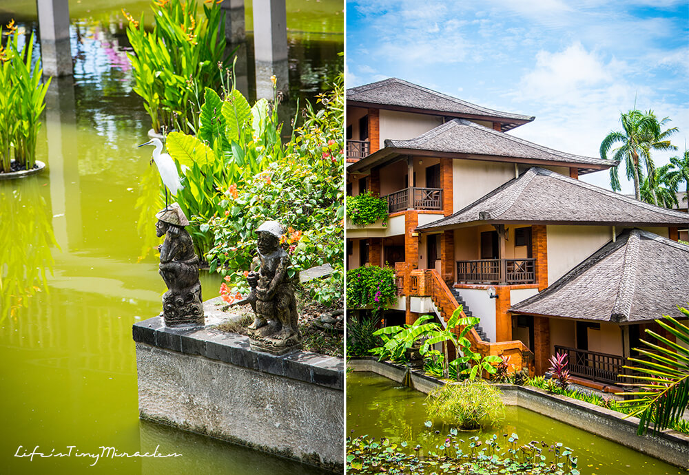 Clubmed Bali Collage 13