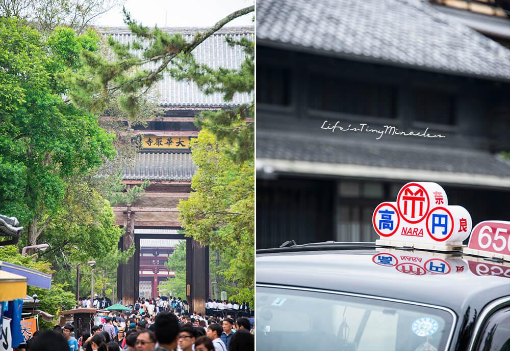 Nara Collage 6