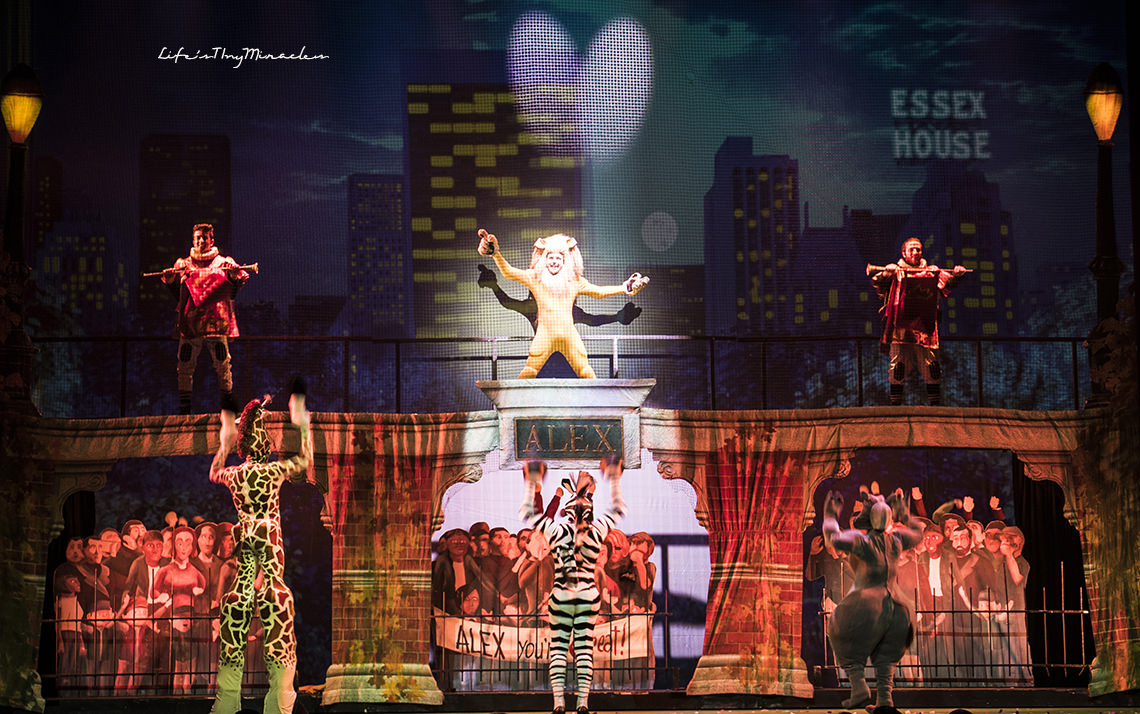 Madagascar Live From Screen To Stage Life S Tiny