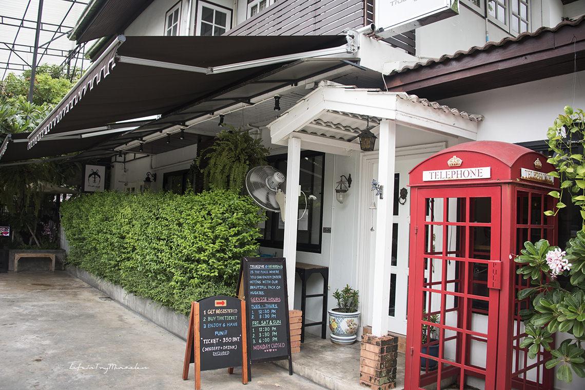 BangkokHuskyCafe03