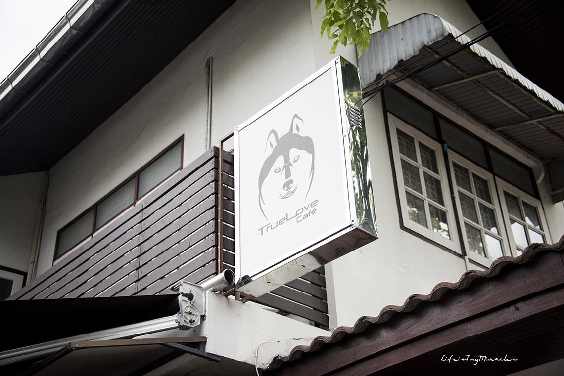 BangkokHuskyCafe31